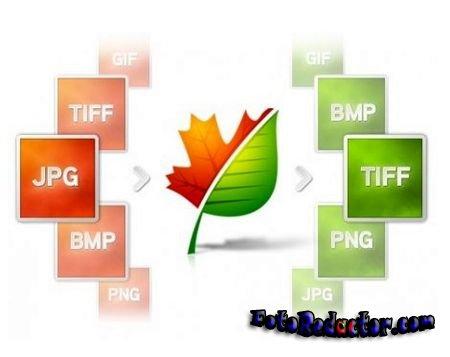 Форматы изображений TIFF и JPEG