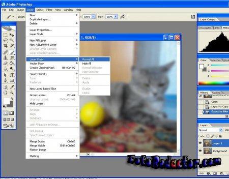 Как размыть фон в программе фотошоп