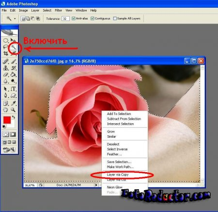 Как в программе фотошоп скопировать выделенную область на новый слой