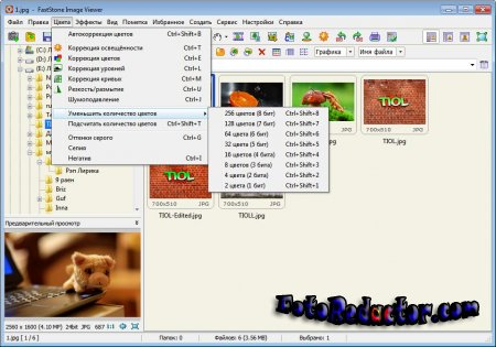 FastStone Image Viewer v6.7 (RUS|+Portable)