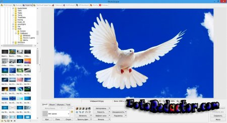 Photoscape v3.7 (RUS|+Portable)