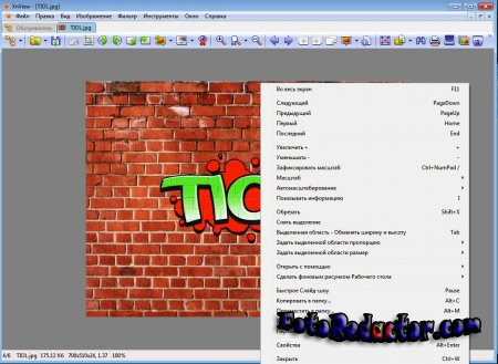 XnView 2.46 Full (RUS|+Portable)