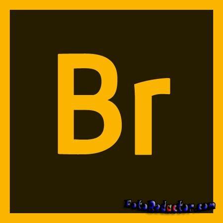 Adobe Bridge CC 2019 скачать русскую версию бесплатно с торрента